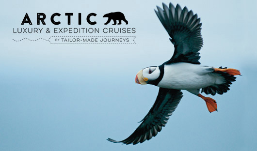 Arctic-1---Horned-Puffin-Heritage-Expedition-ATerauds_Wrangel_promo_at-065