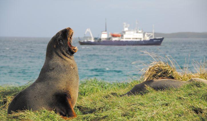 ARuss Spirit of Enderby in the Subantarctic Islands